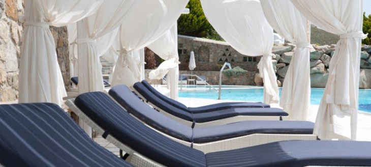 Pool and garden Services in Sarasota