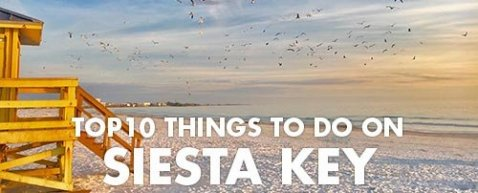 Best Things To Do on Siesta Key